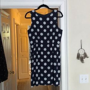 J Crew Navy and White Polka Dot Dress